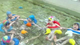 Бассейн в детском саду.MOV(В детском саду № 71 Краматорска проводят занятия плаванием. Температура воды в бассейне +28 градусов., 2011-12-27T13:56:43.000Z)