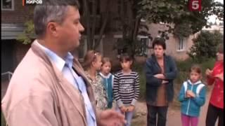 Бойня собак в Кирове