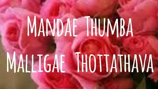 MANDAE THUMBA MALLIGAE THOTTATHAVA BADAGA SONG