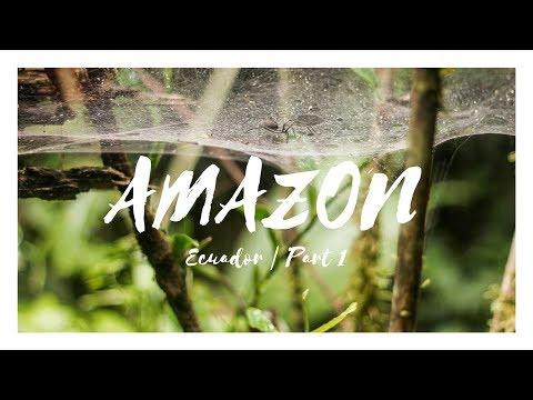 Travel Through The Amazon Rainforest   Ecuador   Part 1