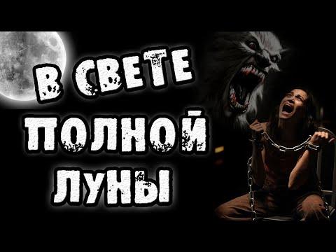 Страшные истории на ночь - В СВЕТЕ ПОЛНОЙ ЛУНЫ - Страшилки на ночь