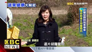 蕃茄醬台灣日本同步技術 製作過程曝光