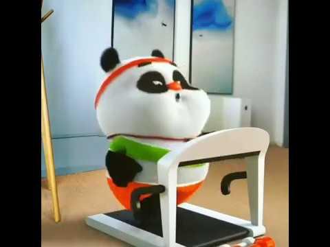 pp wa panda - all desain