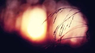 Bulb - Tenderness