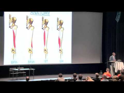 """Treatment of hamstring  injuries - acute and chronic "" From Sports Medicine Congress 2016"
