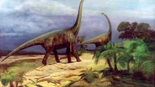 3.  Биосфера. Эволюция растений и животных.