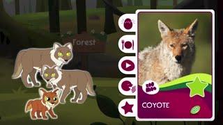 Учим лесных животных. Развивающая игра. Zoo Moo