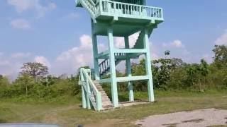 Very dengerious Forest watch tower to see the Wild Animals like Eliphant , Tiger - Must watch