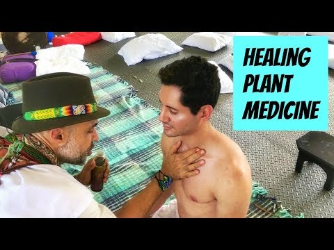 My Experience with Plant Medicine and Ayahuasca for Healing