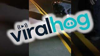 Woman Lends Helping Hand to Furry Friend || ViralHog