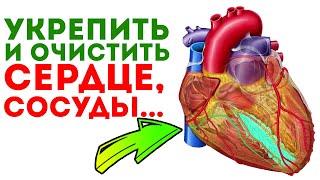 Знахарь - я раскрою вам травы и рецепты для укрепления сердца и сосудов + советы специалистов