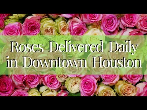 Flower Delivery Downtown Houston   Roses Delivered in TX