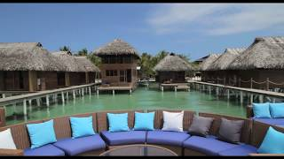 Azul Paradise | Bocas del Toro | TipToe Tours