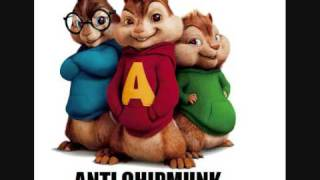 The Flame of Youth ANTI CHIPMUNK