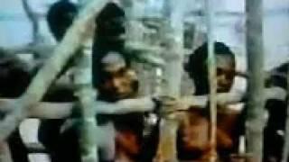 Raizes - Kunta Kinte é capturado e vendido como escravo.