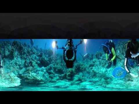 360° Reef Replenishing