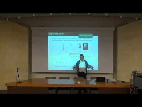 Giovanni Naldi - Numerical approximation of some nonlocal conservation laws