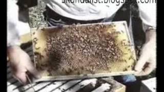 Термоблок, пенополистерол, трехслойная конструкция.(http://skandalist.blogspot.com/2010/12/blog-post.html Продолжение видео смотри в блоге, адрес указан в этом видео. Термоблок,..., 2010-12-25T20:29:14.000Z)