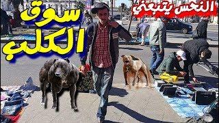 يوم منحوس في البيع والشراء في سوق الكلب  (#vlog 75)