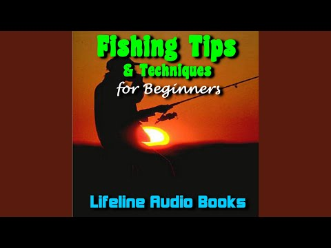 The Difference Between Saltwater And Freshwater Fishing