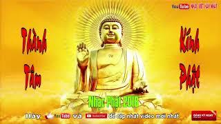 Thành Tâm Kính Phật - Nhạc Phật Giáo, Nhạc Thiền Tĩnh Tâm Giúp Con Người An Nhiên Tự Tại
