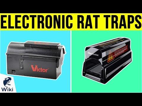7 Best Electronic Rat Traps 2019