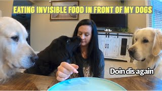 Eating Invisible Food In Front Of My Dogs