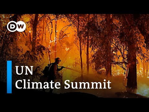 UN warns of 'point of no return' at the 2019 Climate Summit in Madrid | DW News