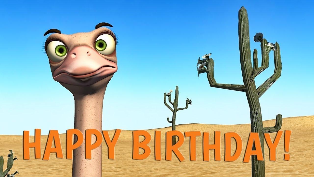 Funny Happy Birthday Song Ostrich And Dodo Sing Happy Birthday Youtube