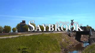 a Psalm in Saybrook - Ch 111