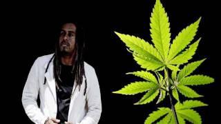 Noah - Pass Mi Di Weed ( Cultivator Riddim ) Brand New 2014