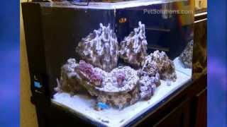 PetSolutions: Current USA Orbit Marine LED Aquarium Light Fixture