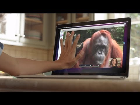 amazing!-orangutan-asks-girl-for-help-in-sign-language