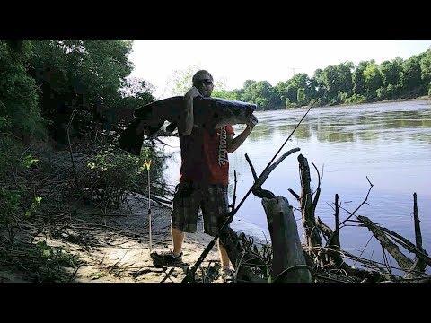 Monster Catfish On Mn River