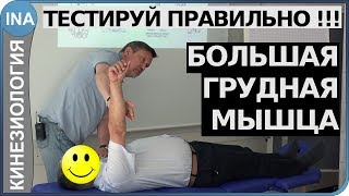 Мышечное тестирование. Большая грудная мышца. Кинезиология. Обучение
