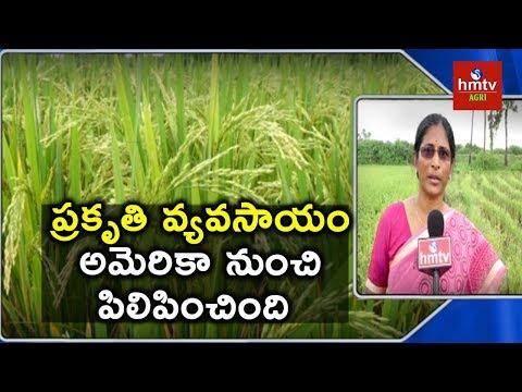 Natural Farming | Woman Farmer Ganga Bhavani Success Story | hmtv Agri