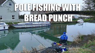 Pole Fishing with Bread Punch - River Hull