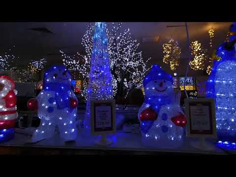 Christmas at Brigg Garden Centre 2018