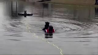 US-TX-Dog-Rescue