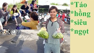 Vợ thằng Sang đi bán táo hồng siêu ngọt | Khu công nghiệp TÂN HƯƠNG | Làm dâu miền tây