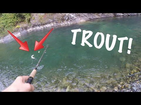 Float Fishing For Trout! (Vedder River)