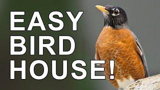 The Easiest Birdhouse You Can Build - The Ledge Nest Bird House