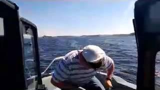 Yamarin cross 60C, частина перша, моя розповідь про човні. 2013. Ямарин крос 60С