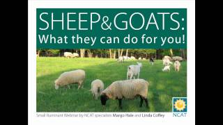 Sheep and Goats: What they can do for you!