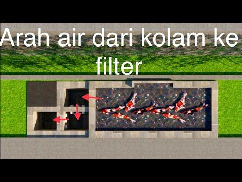 Desain kolam koi minimalis dengan filter tiga chamber ...