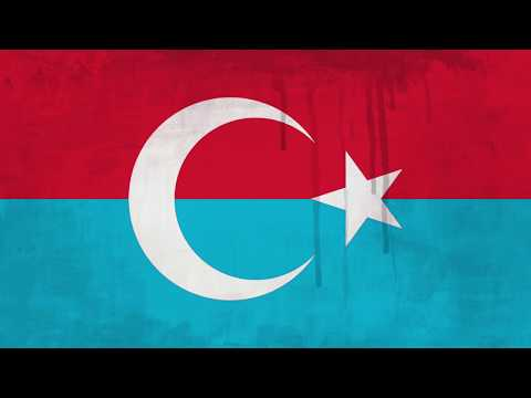 Туркестанский легион, краткая