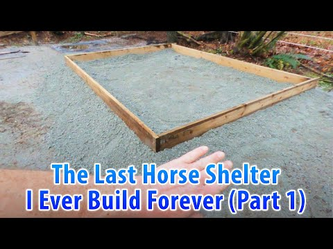 The Last Horse Shelter I Ever Build Forever (Part 1)
