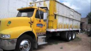 camiones torton.