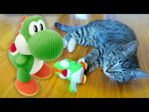 It's Friday! So here's a kitten playing with a Mega Yarn Yoshi amiibo