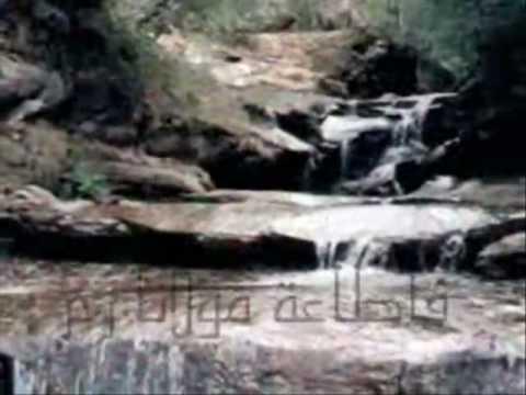 عمر غسان المواس - نشيد لا قوة إلا بالله- Omar Mawas